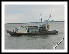 Borneo - Sabah
